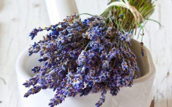 Aromaterapia para a Alma